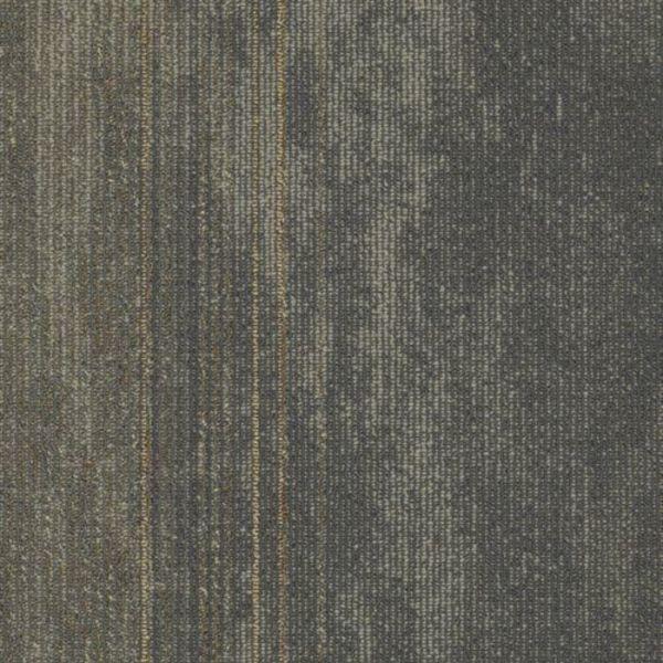 Shaw Contract Walk Off Carpet Tile Carpet Vidalondon